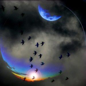 tumblr lj74kir5Ii1qa2e9qo1 500 300x300 Mad Song by William Blake