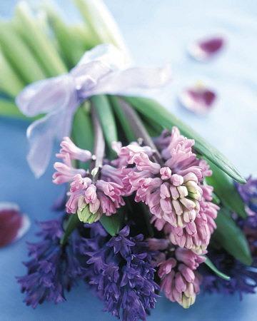 Hyacinth by Edna St. Vincent Millay
