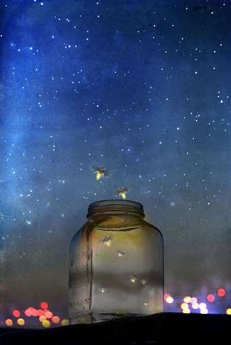 fireflyjarmagicalnightskystarslight ec23ae44e656b9ebec625b599874d971 h Fireflies in the Garden by Robert Frost