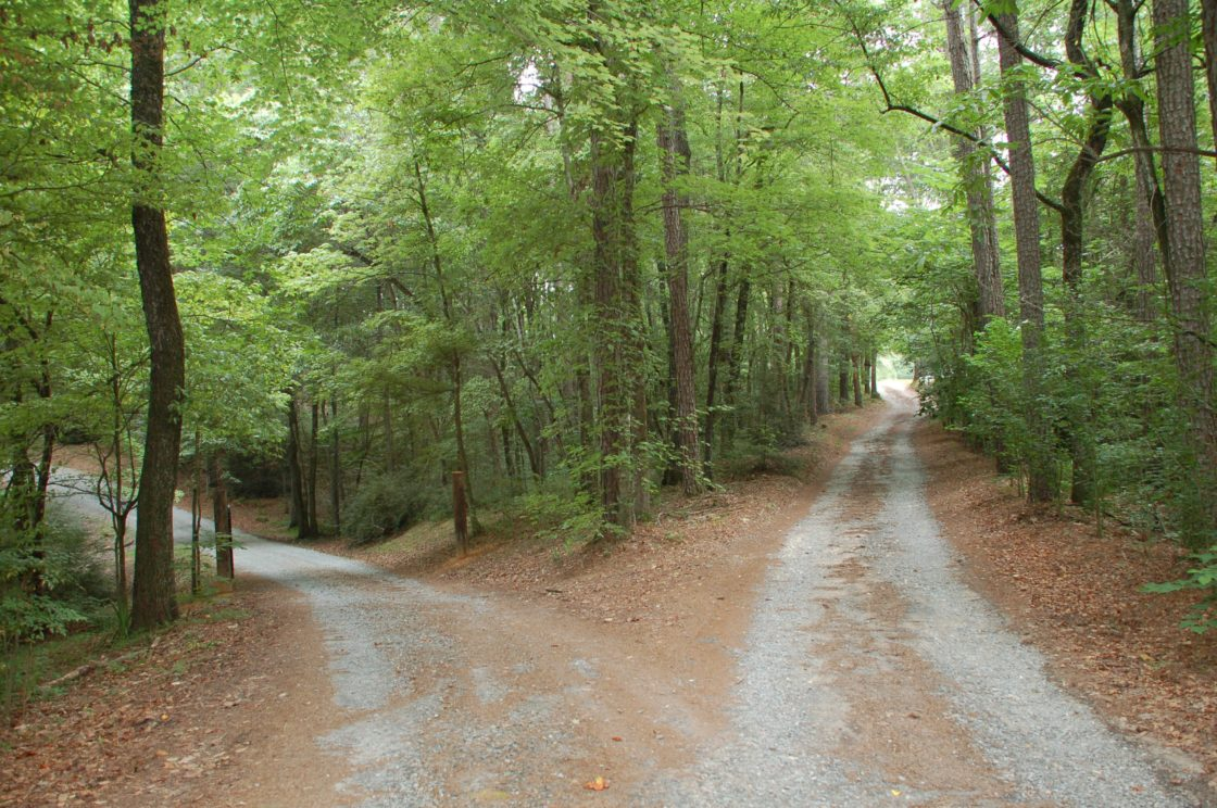 """choosing the right path in the road not taken by robert frost What gives robert frost's """"the road not taken"""" its power on the 100th anniversary of the poem's publication, a smithsonian poet examines its message and how it encapsulates what its author was all about."""